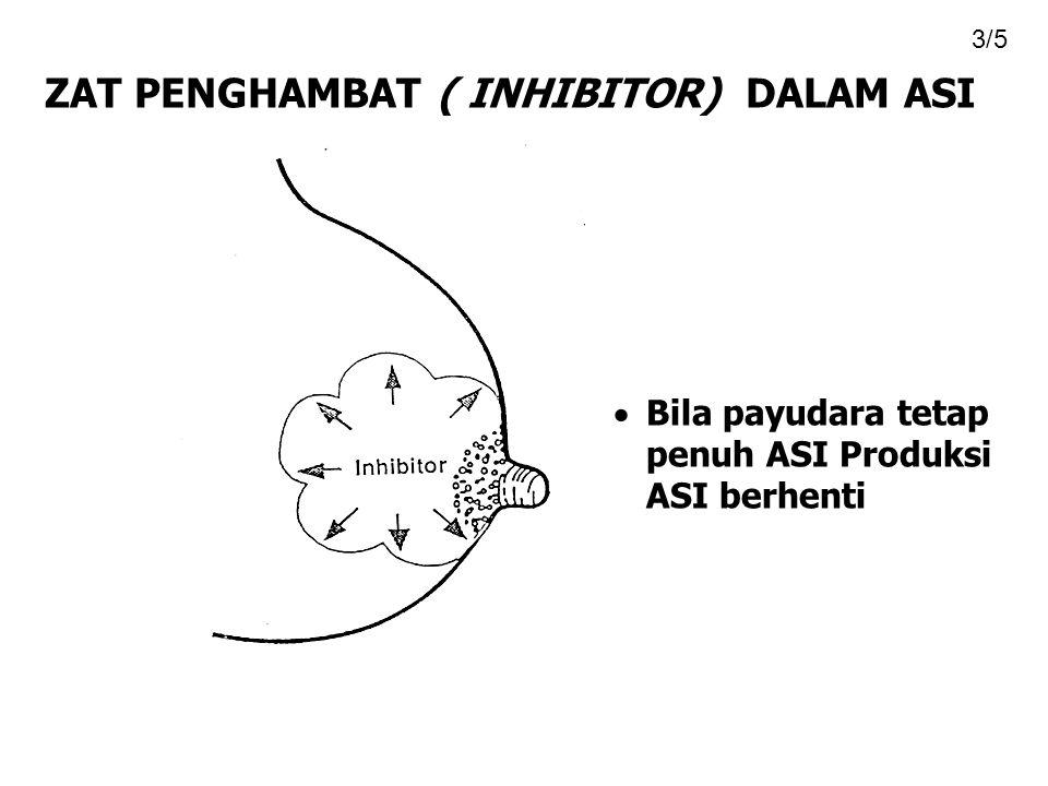 ZAT PENGHAMBAT ( INHIBITOR) DALAM ASI