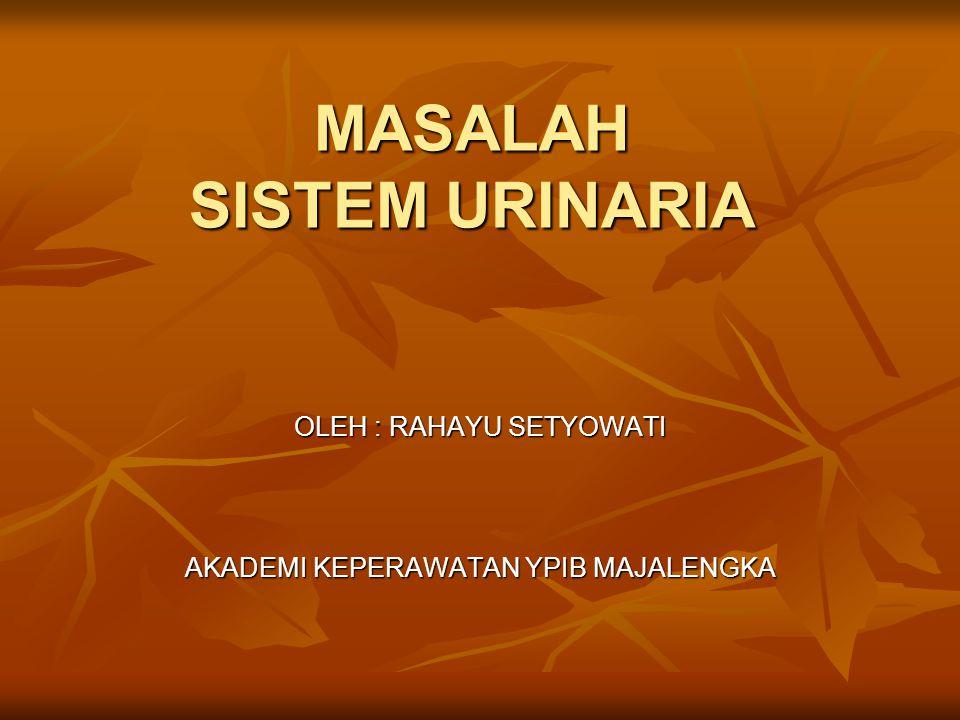 MASALAH SISTEM URINARIA