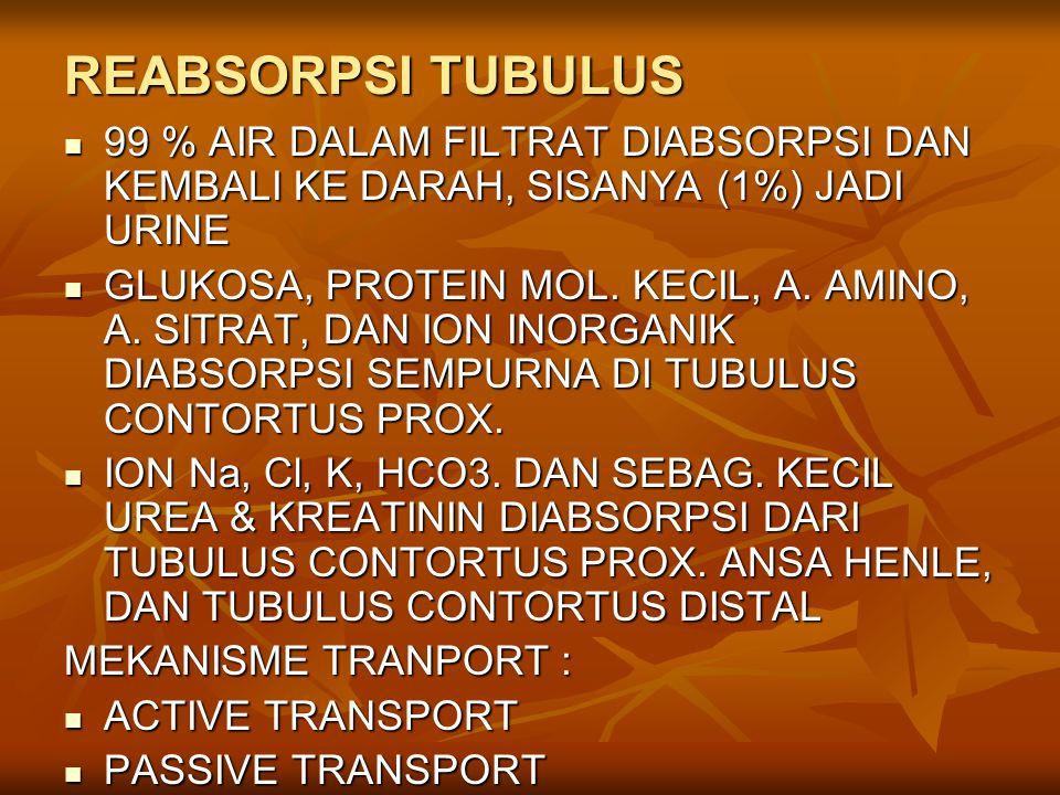 REABSORPSI TUBULUS 99 % AIR DALAM FILTRAT DIABSORPSI DAN KEMBALI KE DARAH, SISANYA (1%) JADI URINE.