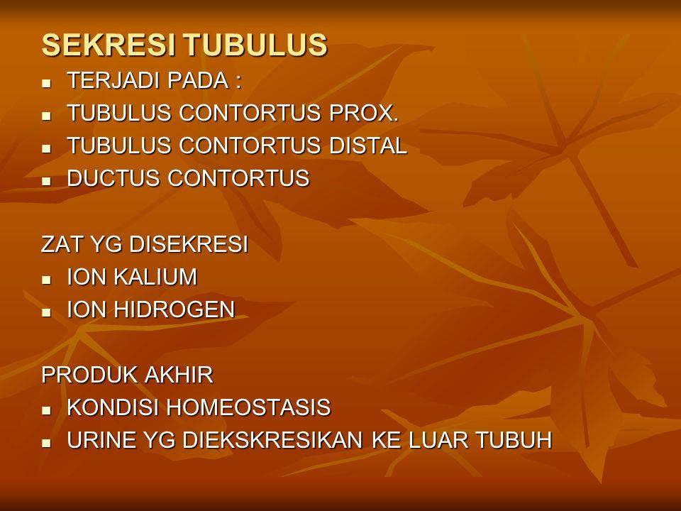 SEKRESI TUBULUS TERJADI PADA : TUBULUS CONTORTUS PROX.