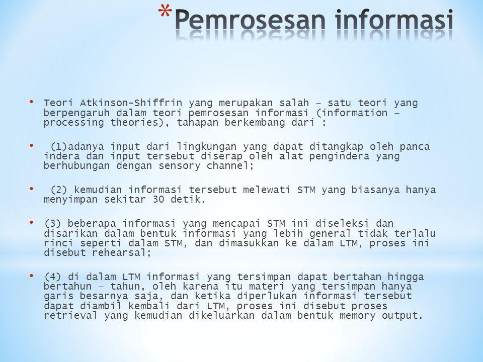 Pemrosesan informasi