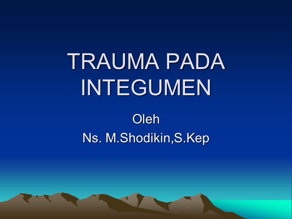 TRAUMA PADA INTEGUMEN Oleh Ns. M.Shodikin,S.Kep