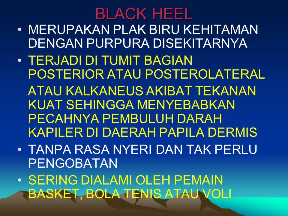 BLACK HEEL MERUPAKAN PLAK BIRU KEHITAMAN DENGAN PURPURA DISEKITARNYA
