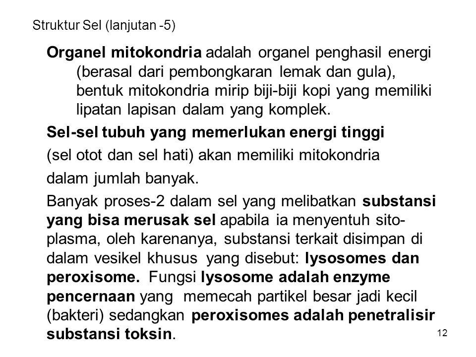 Struktur Sel (lanjutan -5)