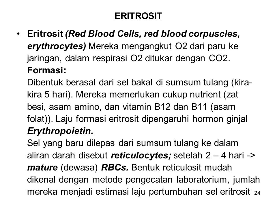 ERITROSIT Eritrosit (Red Blood Cells, red blood corpuscles, erythrocytes) Mereka mengangkut O2 dari paru ke.