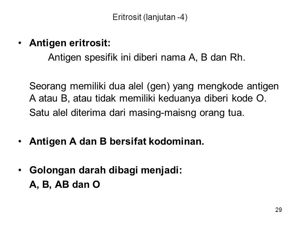 Eritrosit (lanjutan -4)
