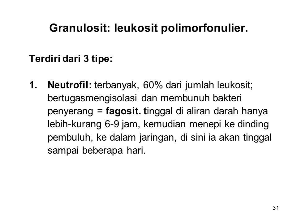Granulosit: leukosit polimorfonulier.