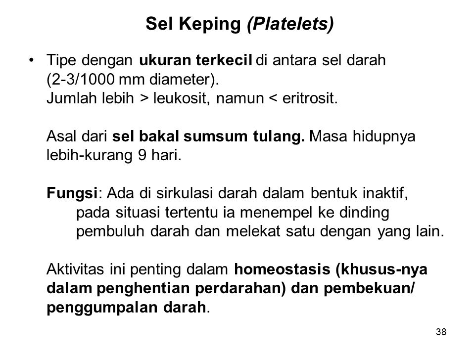 Sel Keping (Platelets)