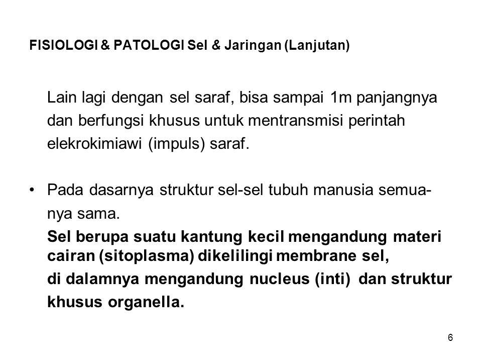 FISIOLOGI & PATOLOGI Sel & Jaringan (Lanjutan)