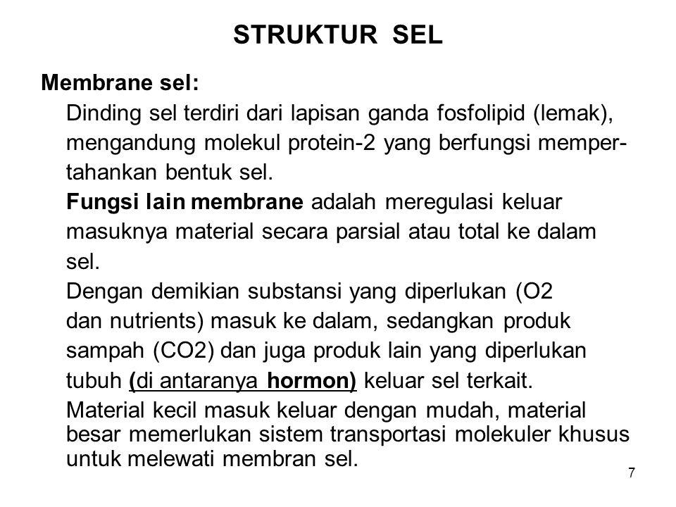 STRUKTUR SEL Membrane sel: