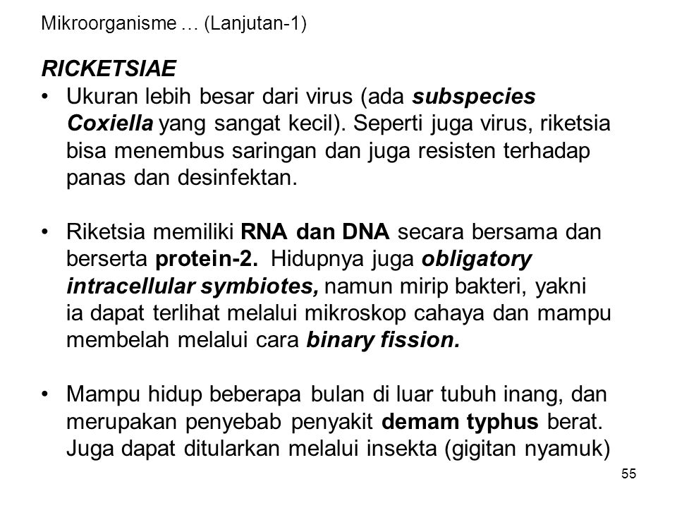 Mikroorganisme … (Lanjutan-1)