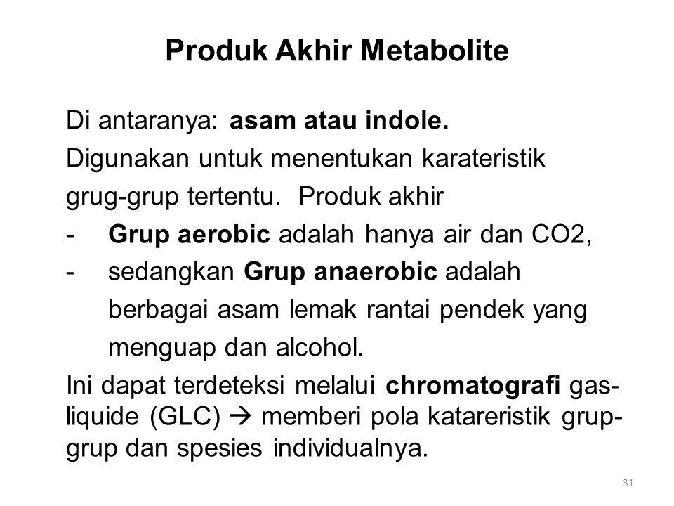 Produk Akhir Metabolite