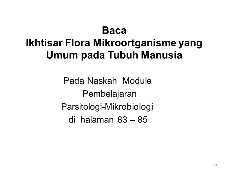 Baca Ikhtisar Flora Mikroortganisme yang Umum pada Tubuh Manusia