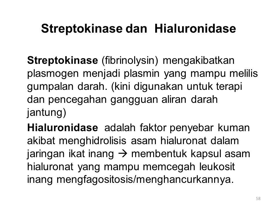 Streptokinase dan Hialuronidase