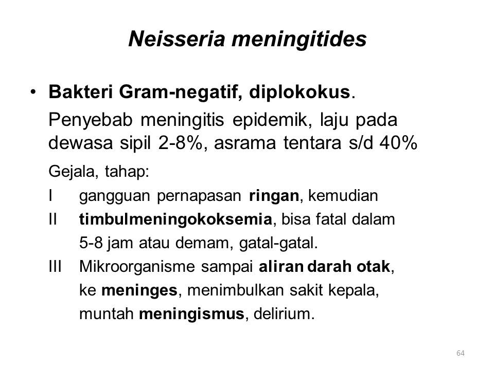 Neisseria meningitides