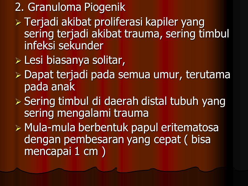 2. Granuloma Piogenik Terjadi akibat proliferasi kapiler yang sering terjadi akibat trauma, sering timbul infeksi sekunder.