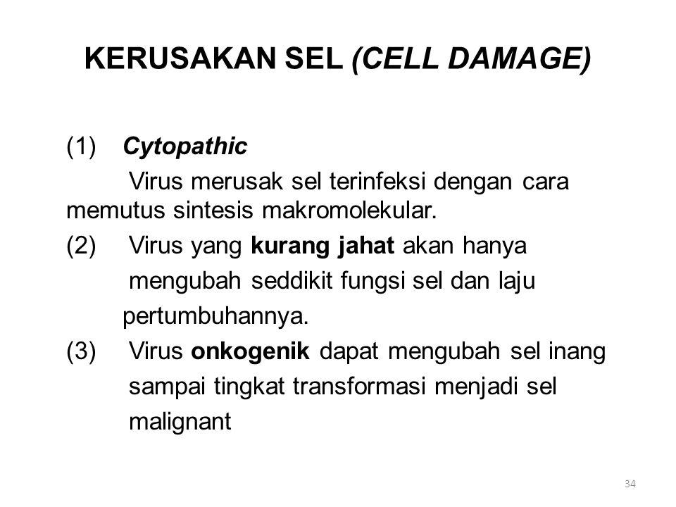 KERUSAKAN SEL (CELL DAMAGE)