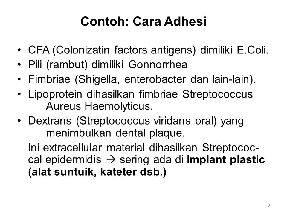 Contoh: Cara Adhesi CFA (Colonizatin factors antigens) dimiliki E.Coli. Pili (rambut) dimiliki Gonnorrhea.
