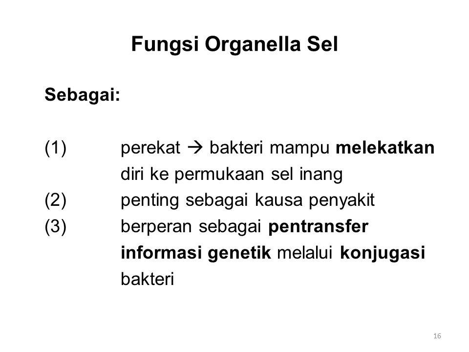 Fungsi Organella Sel