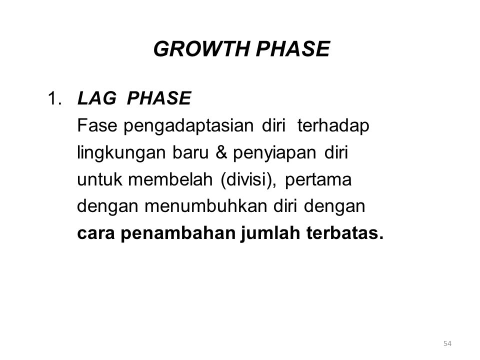 GROWTH PHASE