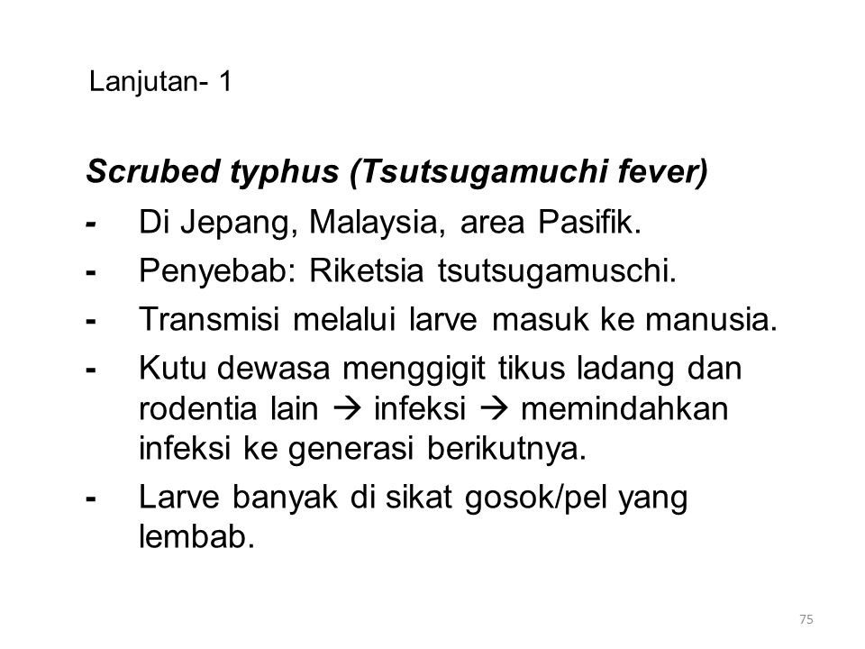 Scrubed typhus (Tsutsugamuchi fever)