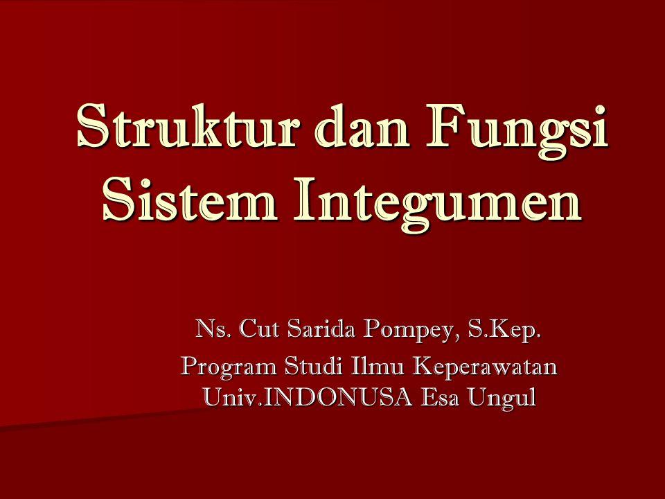 Struktur dan Fungsi Sistem Integumen
