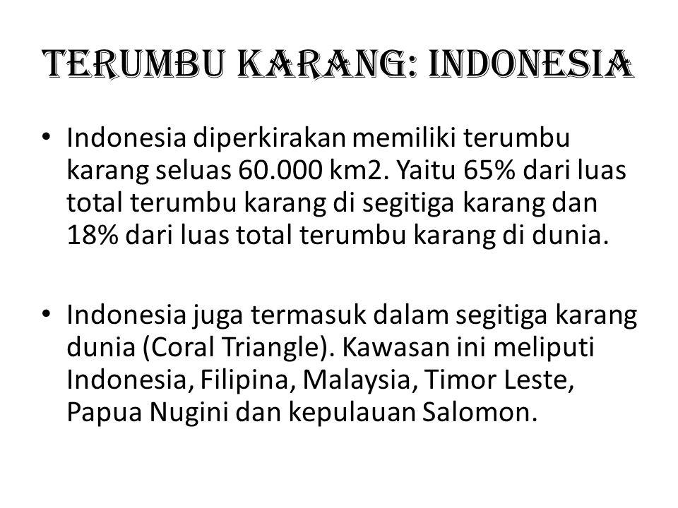 Terumbu Karang: Indonesia