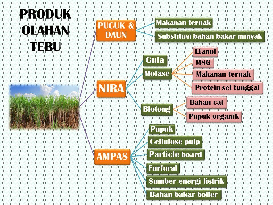 Substitusi bahan bakar minyak