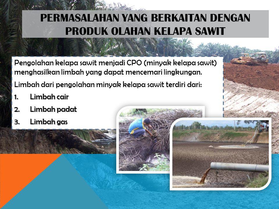 Permasalahan yang berkaitan dengan produk olahan kelapa sawit
