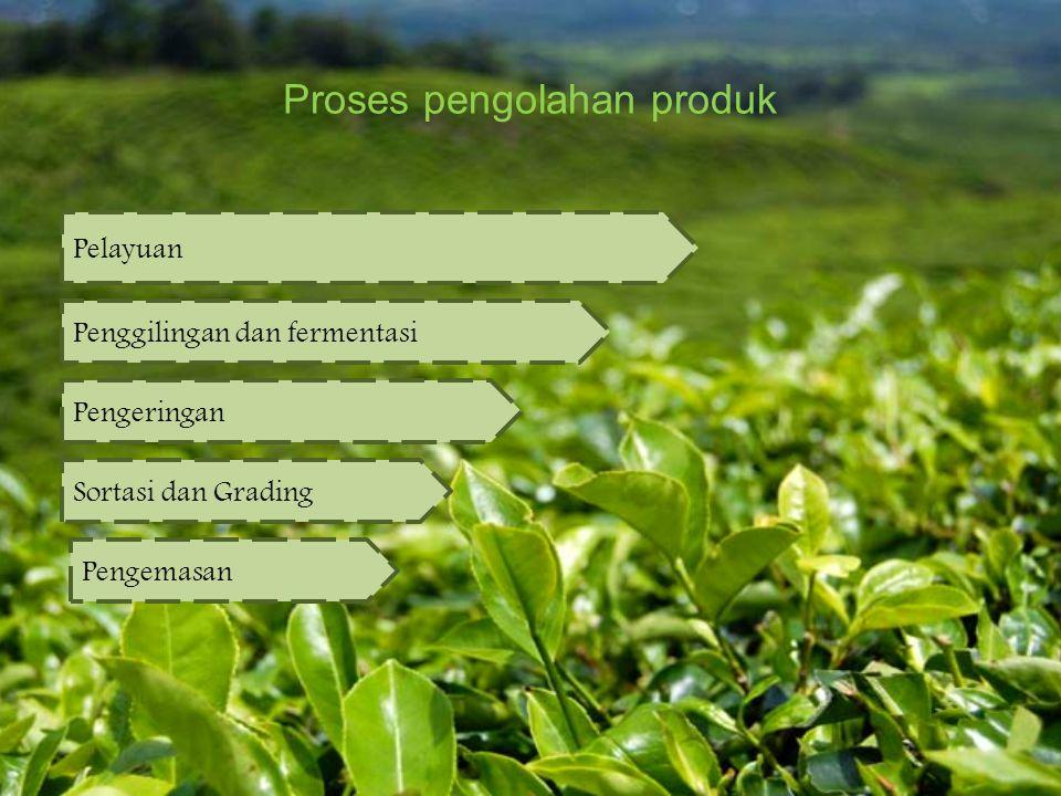 Proses pengolahan produk