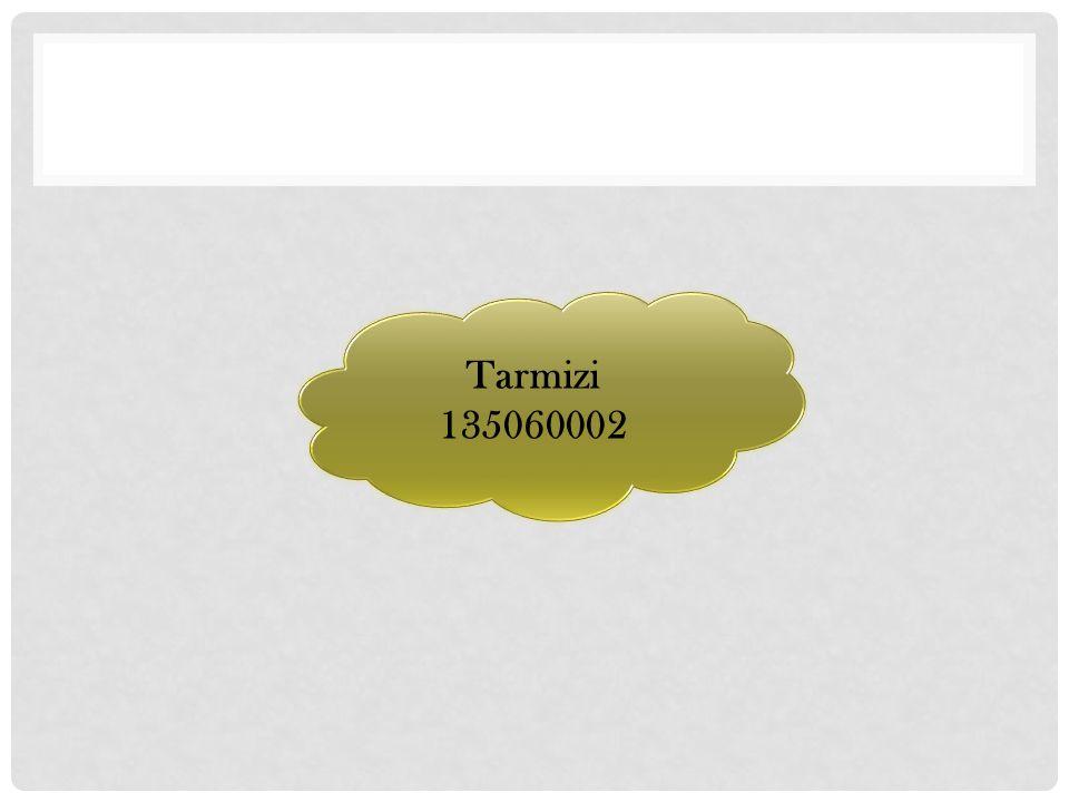 Tarmizi 135060002