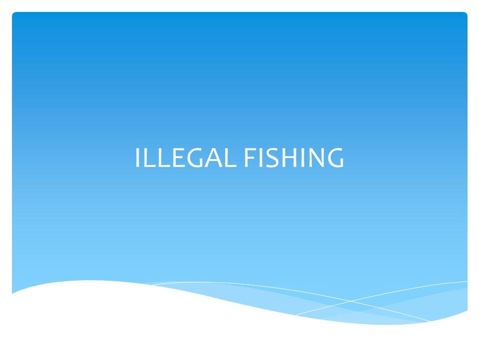 ILLEGAL FISHING