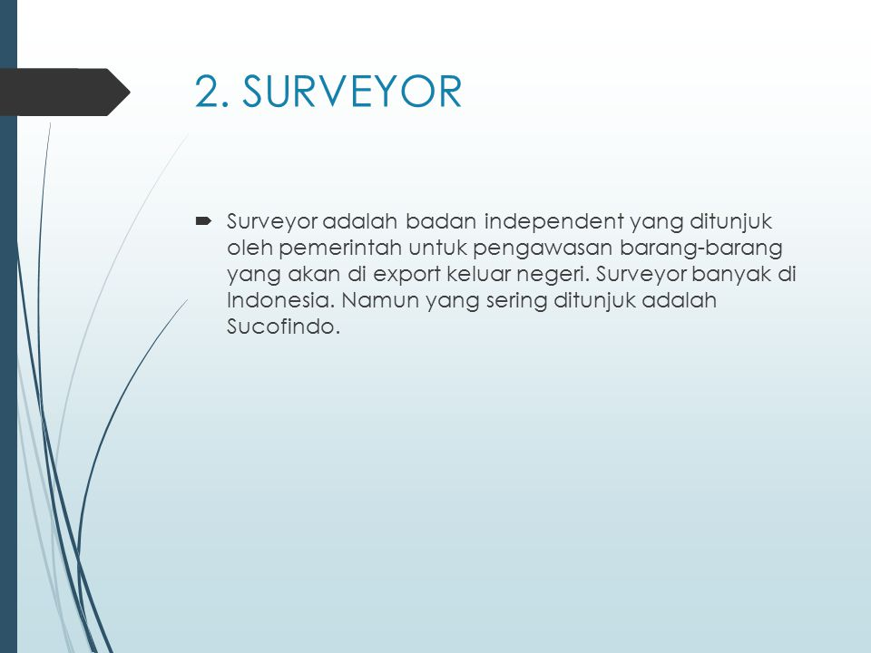 2. SURVEYOR