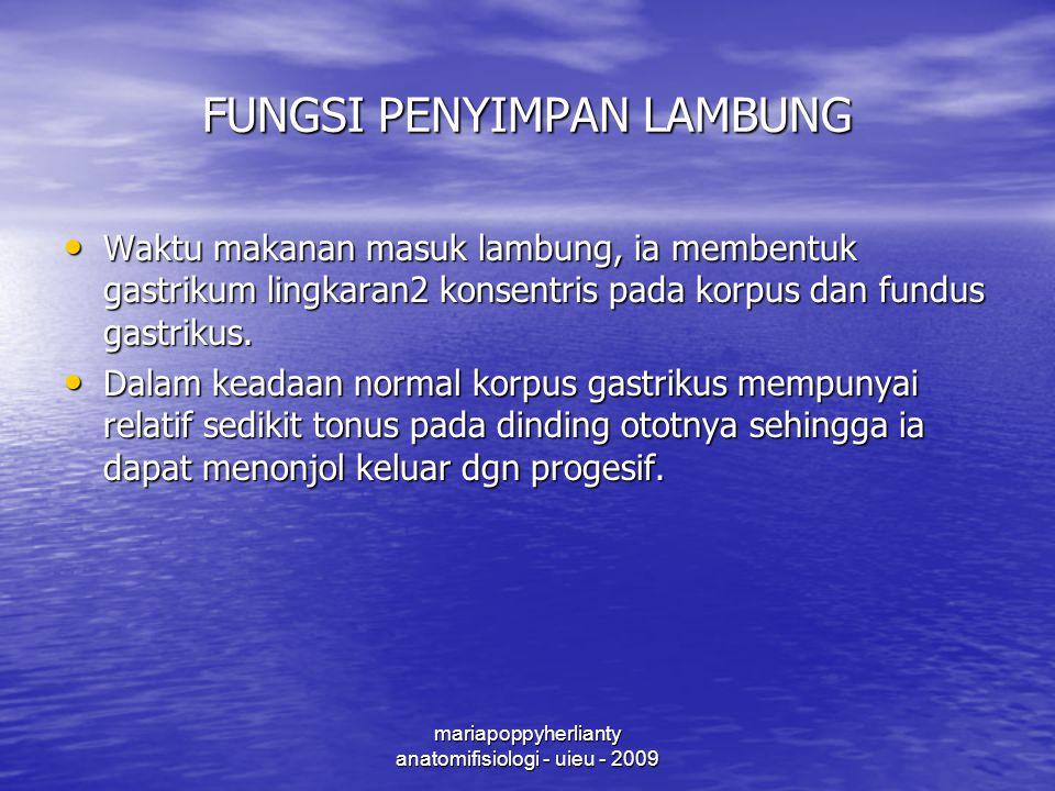 FUNGSI PENYIMPAN LAMBUNG