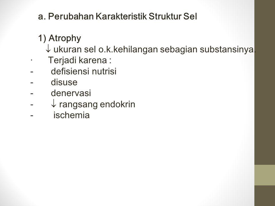  ukuran sel o.k.kehilangan sebagian substansinya. · Terjadi karena :