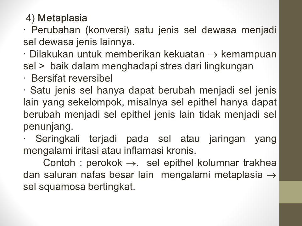 4) Metaplasia · Perubahan (konversi) satu jenis sel dewasa menjadi sel dewasa jenis lainnya.