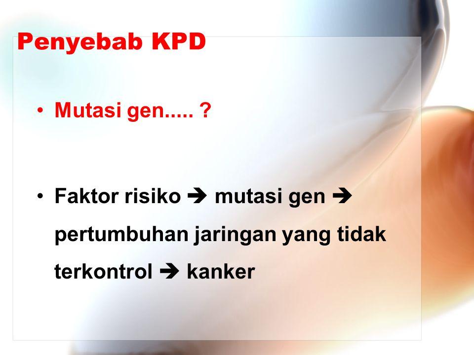 Penyebab KPD Mutasi gen.....