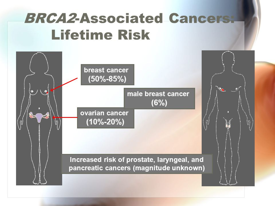 BRCA2-Associated Cancers: Lifetime Risk