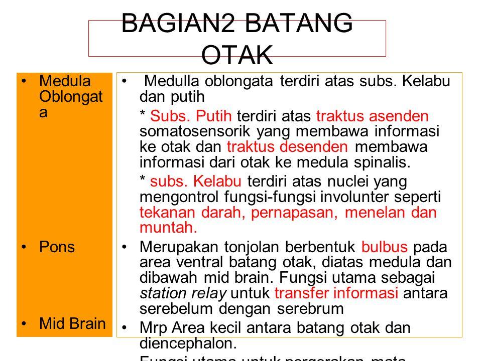 BAGIAN2 BATANG OTAK Medula Oblongata Pons Mid Brain