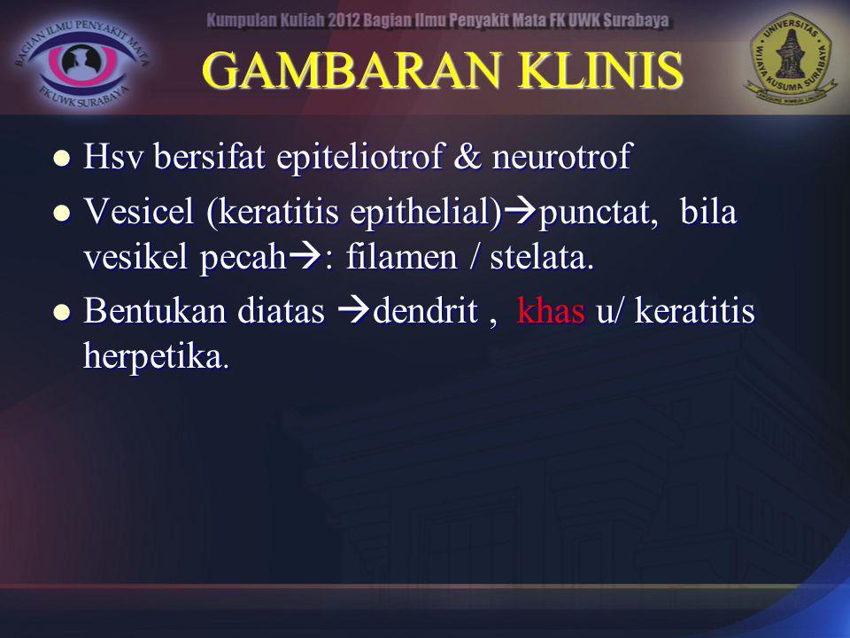 GAMBARAN KLINIS Hsv bersifat epiteliotrof & neurotrof