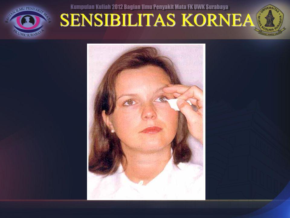 SENSIBILITAS KORNEA