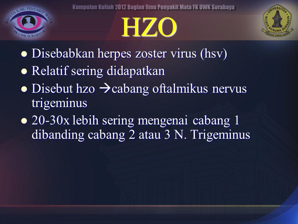 HZO Disebabkan herpes zoster virus (hsv) Relatif sering didapatkan