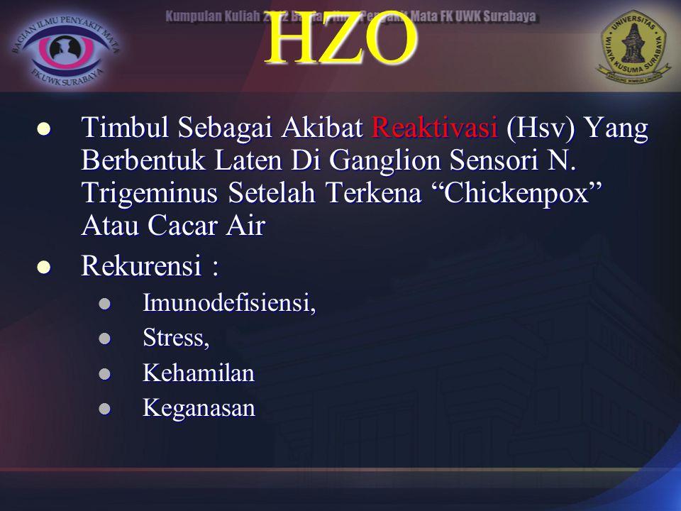 HZO Timbul Sebagai Akibat Reaktivasi (Hsv) Yang Berbentuk Laten Di Ganglion Sensori N. Trigeminus Setelah Terkena Chickenpox Atau Cacar Air.