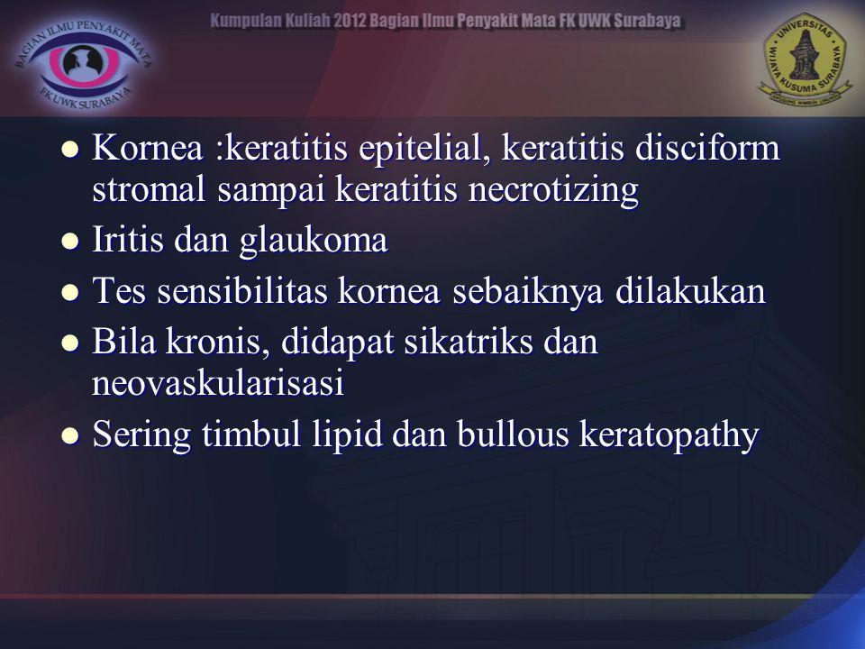 Kornea :keratitis epitelial, keratitis disciform stromal sampai keratitis necrotizing