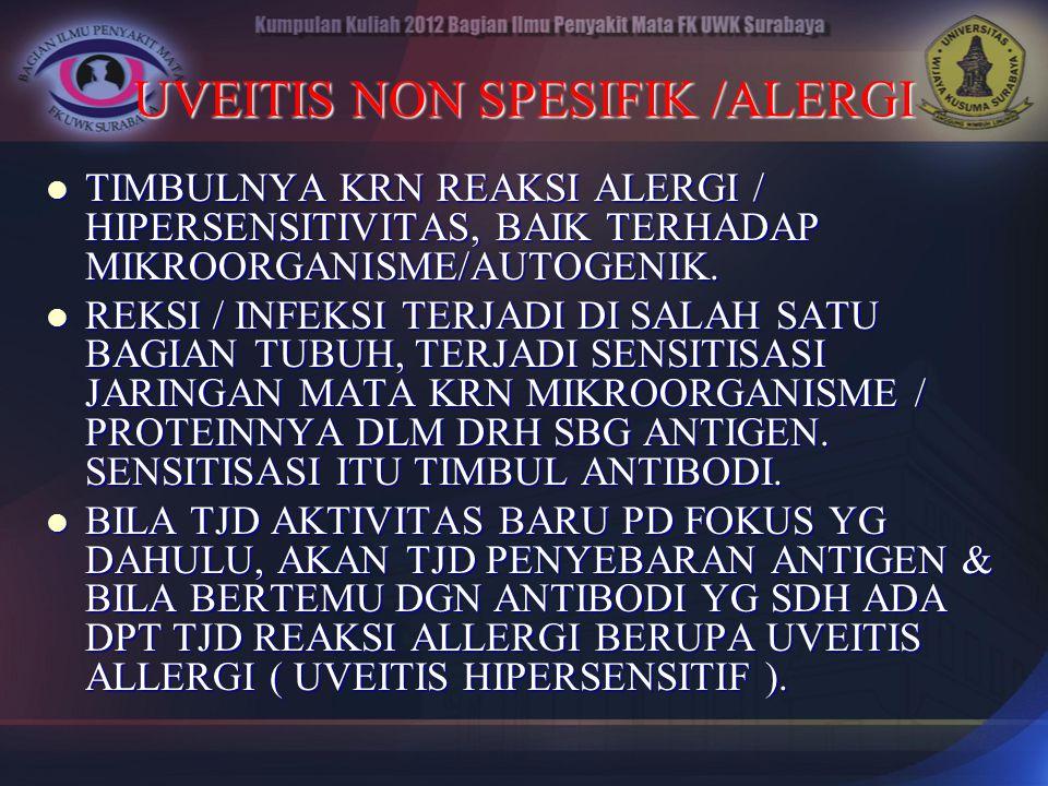 UVEITIS NON SPESIFIK /ALERGI