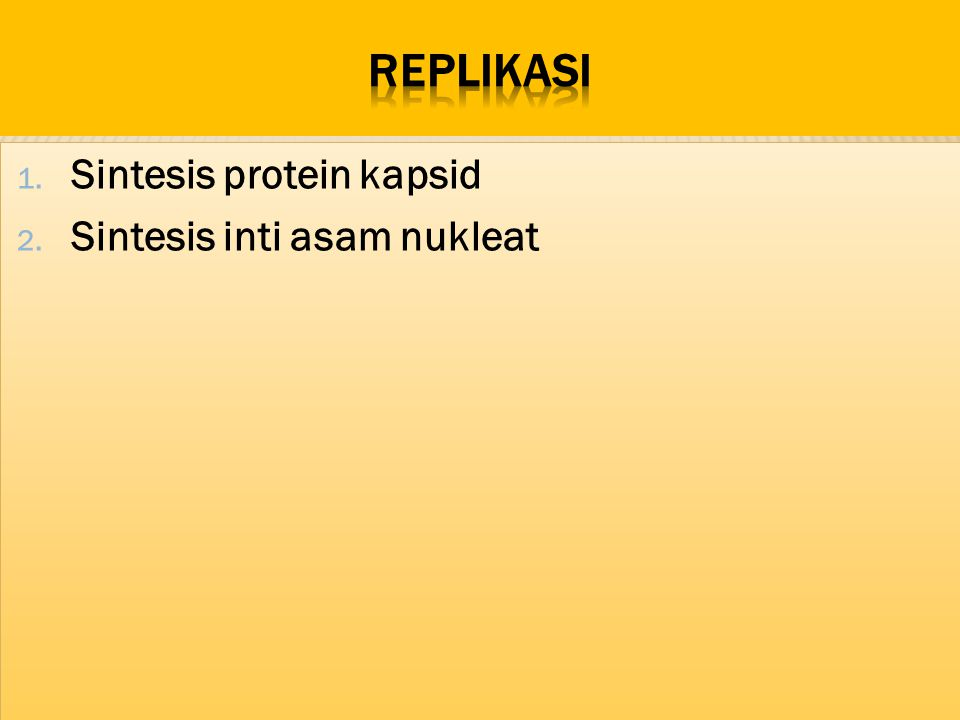 replikasi Sintesis protein kapsid Sintesis inti asam nukleat