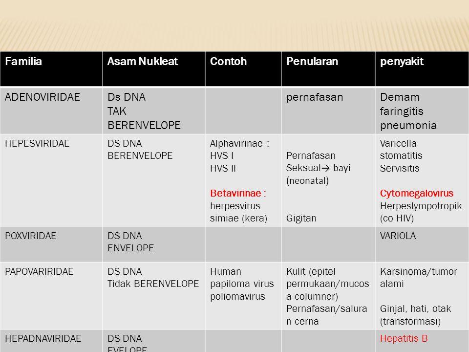 Familia Asam Nukleat Contoh Penularan penyakit ADENOVIRIDAE Ds DNA
