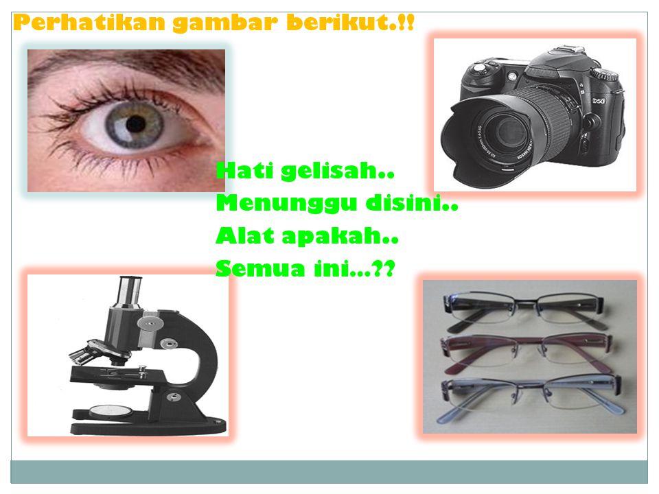 Perhatikan gambar berikut.!!