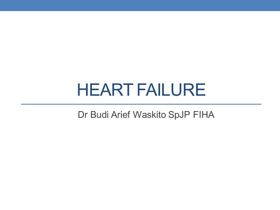 Dr Budi Arief Waskito SpJP FIHA