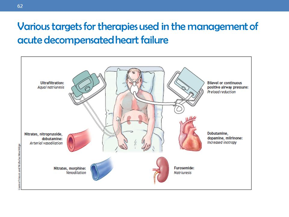 Various targets for therapies used in the management of acute decompensated heart failure